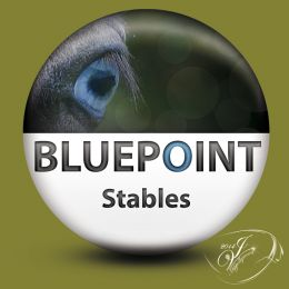HIPPOLLYWOOD_logo_bluepointstables.jpg